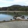 【平泉・毛越寺】大泉が池は海を模した池?敷地の広い500以上の建物があった?
