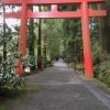 【箱根神社】芦ノ湖に浮かぶ鳥居へ!箱根は食べ物の値段が高い?