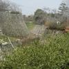 【大和郡山城跡その1】天守台から広い城内を一望!堀と石垣がゴツい?