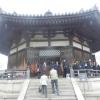 【法隆寺その2】大宝蔵院の百済観音立像を生で見て欲しい!夢殿とフェノロサから「国